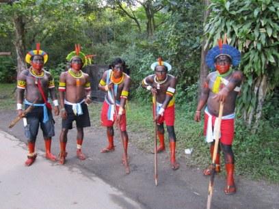 brasil indígenas91 ii