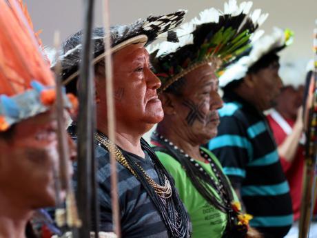 reacción indígena ii
